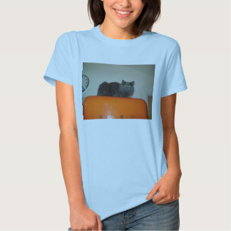 Cat on the refrigerator T-Shirt