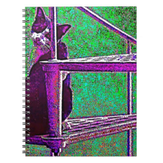 Cat on the stairs spiral notebook