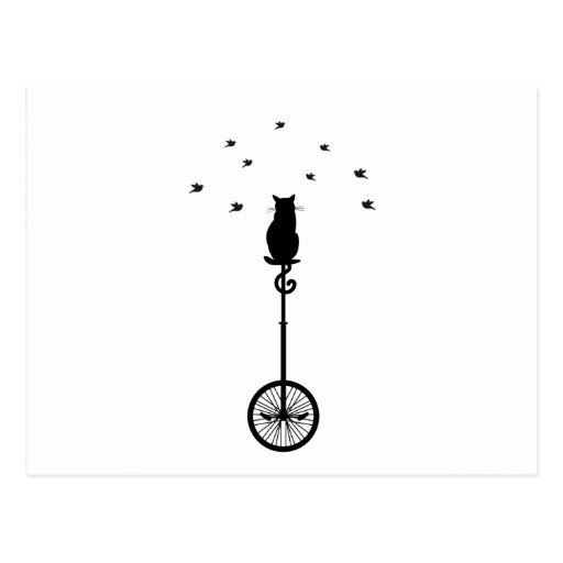 cat on vintage bicycle with birds postcard