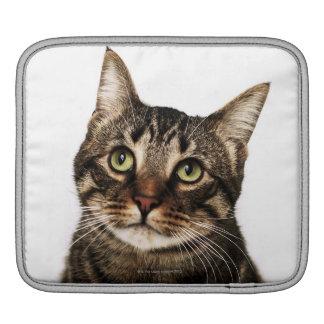 Cat on white background 2 iPad sleeve