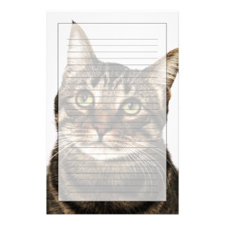 Cat on white background 2 stationery