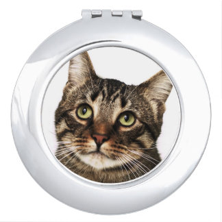 Cat on white background 2 travel mirrors
