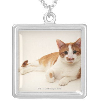 Cat on white background silver plated necklace
