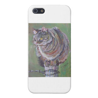 Cat ona pole iPhone 5 cover