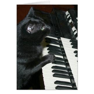 Cat organ recital greeting card