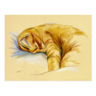 Cat Pastel - Orange Tabby Relaxed Pose Postcard