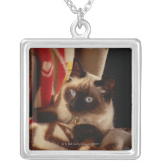 Cat peeking through quilt silver plated necklace