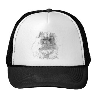 Cat pen-and-ink drawing trucker hats