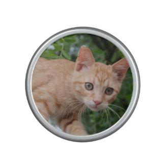 Cat Pet Animal Bluetooth Speaker