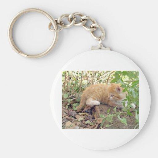 Cat pet animal keychain