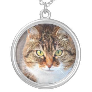 Cat Photo Necklaces