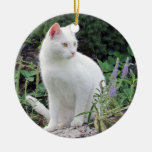 Cat Photo Ornament Two Sided  Animal Lover Gift