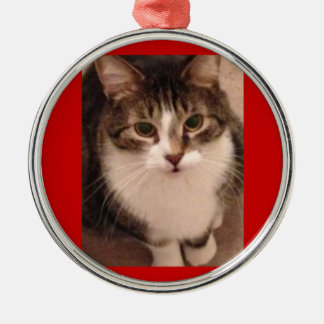 Cat Photo Silver-Colored Round Decoration