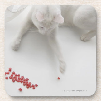 Cat playing with heart shaped candy beverage coasters