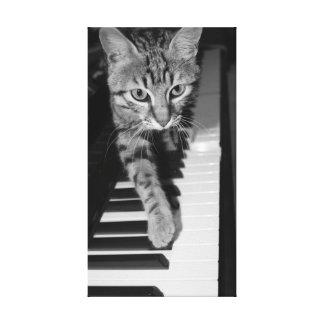 Cat playnig piano canvas prints