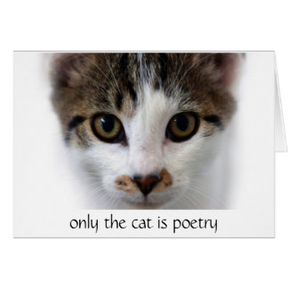 Cat Poetry Greeting Card