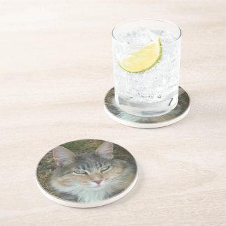 Cat Portrait Beverage Coaster