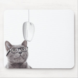 Cat presbyope and glasses looking at a mouse mouse mat