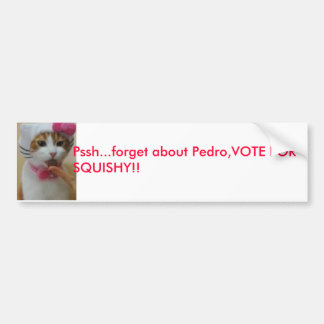 cat, Pssh...forget about Pedro,VOTE FOR SQUISHY!! Bumper Sticker