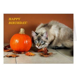 Cat & Pumpkin Birthday Card