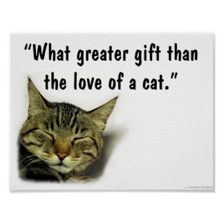 Cat quote poster
