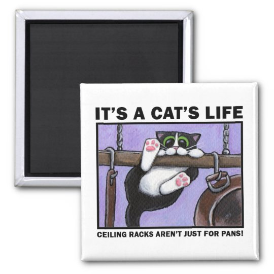 Cat Rack v.01 - It's A Cat's Life Magnets