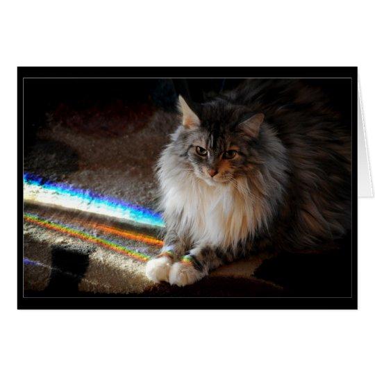 Cat Rainbow Bridge condolence note or greeting Card