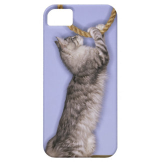Cat reaching for rope iPhone 5 covers