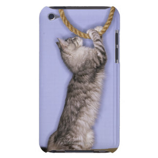 Cat reaching for rope iPod touch Case-Mate case