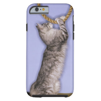 Cat reaching for rope tough iPhone 6 case