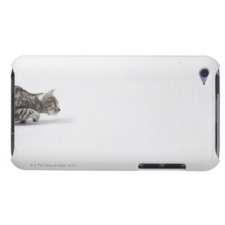 Cat ready to pounce Case-Mate iPod touch case