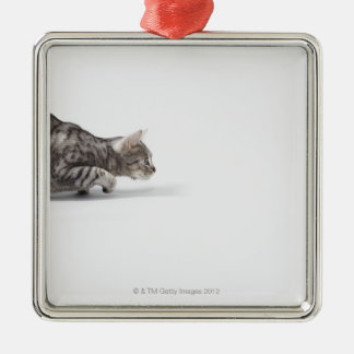 Cat ready to pounce christmas ornament
