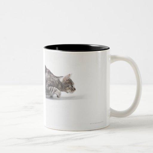 Cat ready to pounce coffee mug