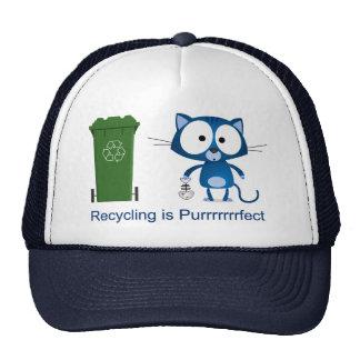 Cat Recycle Cap