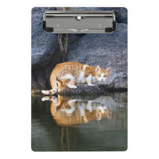 Cat Reflection in Pond Water Funny Animal Photo - Mini Clipboard