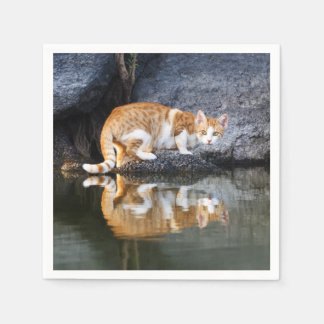 Cat Reflection in Pond Water Funny Kitten Photo // Disposable Serviette