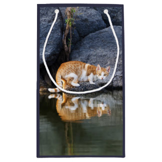 Cat Reflection in Pond Water Funny Photo - Wrap Small Gift Bag