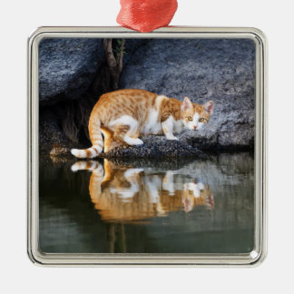 Cat Reflection in Pond Water Photo - decor Silver-Colored Square Decoration