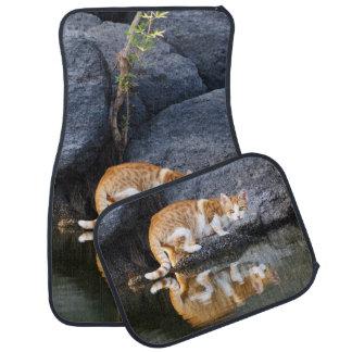 Cat Reflection in Pond Water Photo, floor-mats Car Mat