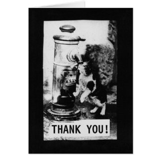 Cat Refreshing in Fountain | Thank You Card