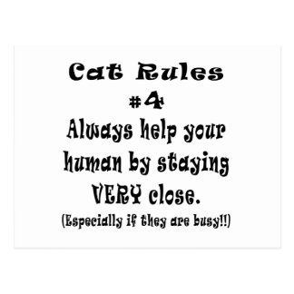 Cat Rules Number 4 Postcard