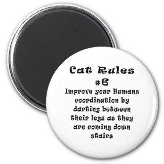 Cat Rules Number 6 6 Cm Round Magnet