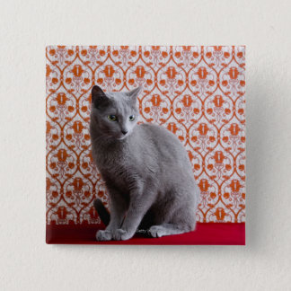 Cat (Russian blue) and wallpaper background 15 Cm Square Badge