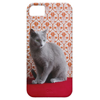Cat (Russian blue) and wallpaper background Barely There iPhone 5 Case