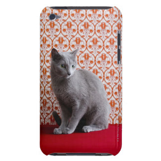 Cat (Russian blue) and wallpaper background Case-Mate iPod Touch Case