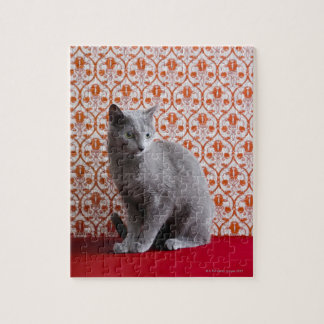 Cat (Russian blue) and wallpaper background Jigsaw Puzzle