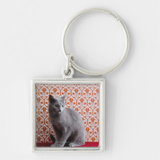 Cat (Russian blue) and wallpaper background Silver-Colored Square Key Ring