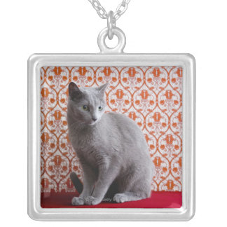 Cat (Russian blue) and wallpaper background Silver Plated Necklace