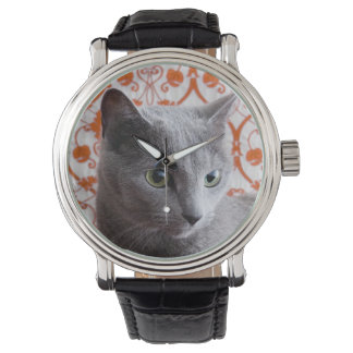 Cat (Russian blue) and wallpaper background Watch