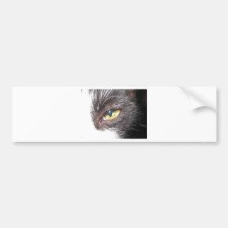 cat s eye bumper sticker